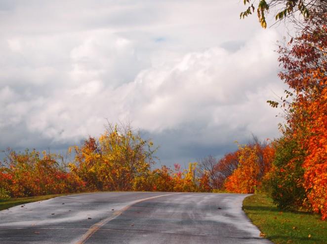 Winding Road in Gatineau Park